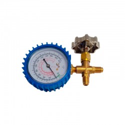 Single Manifold with Gauge
